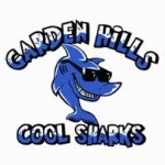 Cool Sharks Team Logo