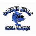 COOL SHARKS FALL SWIM MEET